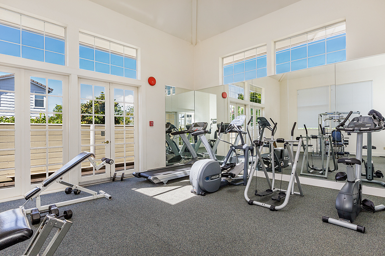 20-334TreasureIsland-gym-mls